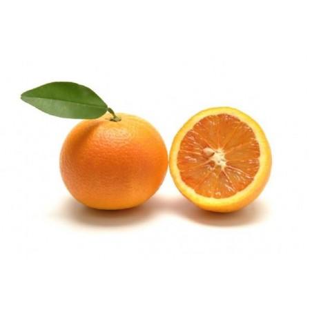 Arancia rossa Sanguinello