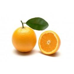 Arancia bionda Valencia