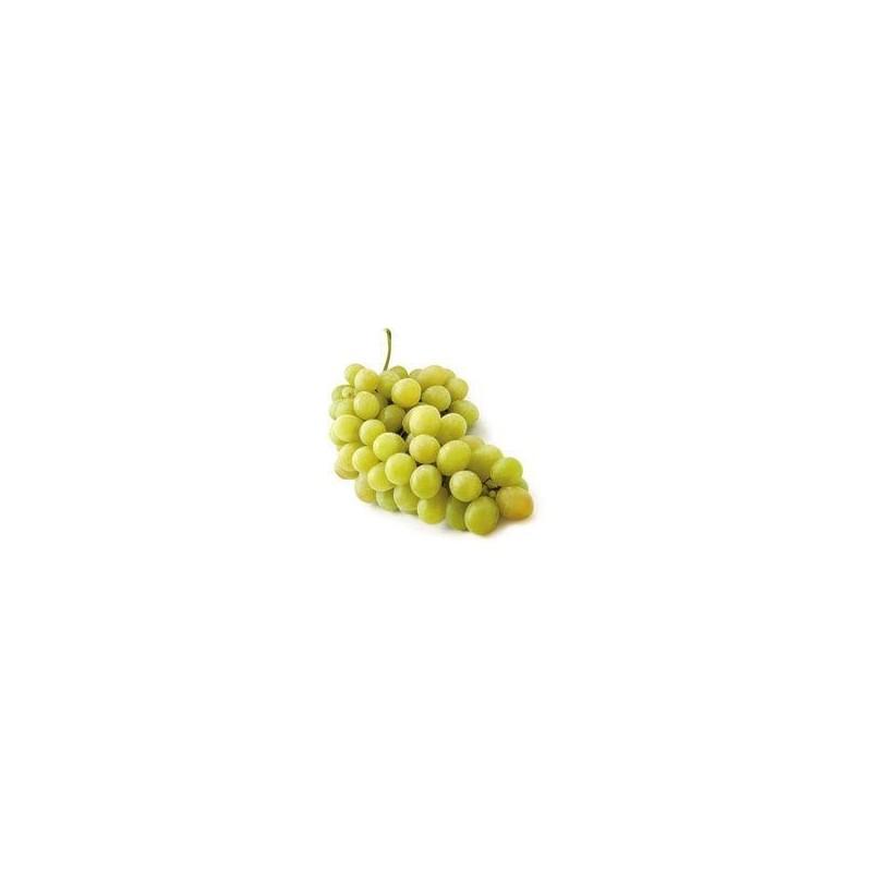 Uva di Sicilia