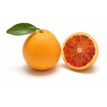 Arancia rossa Moro