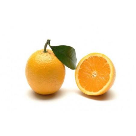 Arancia bionda Ovale